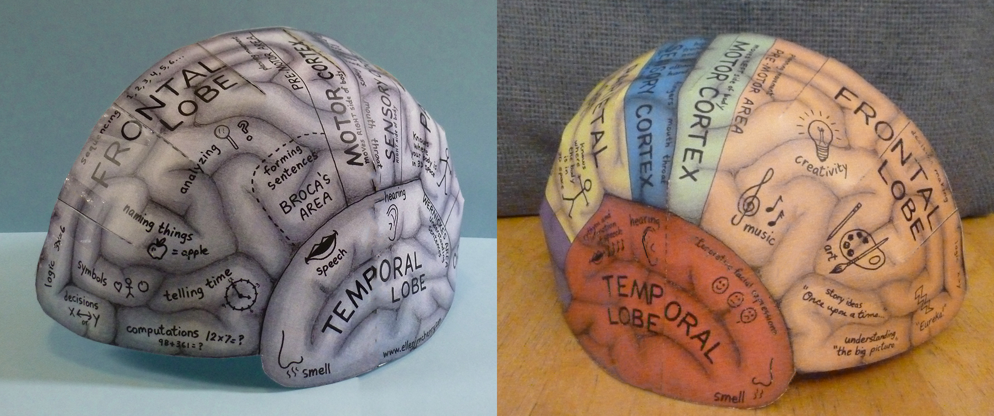 graphic relating to Brain Hat Printable called Head Hemisphere Hat