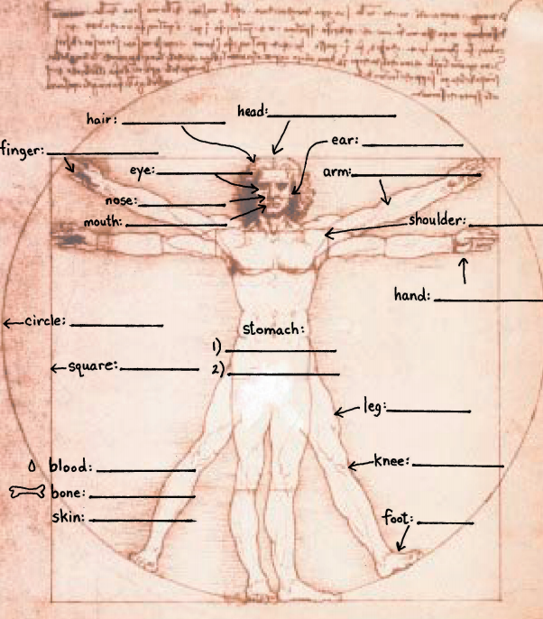 Parts of the Body Worksheet – Parts of the Body Worksheet