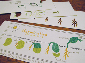 germinationstencils