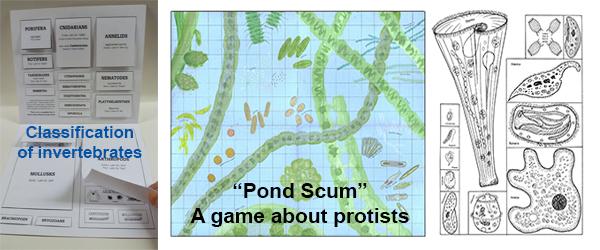 Slideshow_PondScum