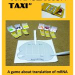 Translation Taxi cover for TpT