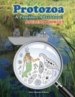 Protozoa; A Poseidon Adventure!